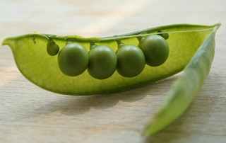 peas | by issyeyre