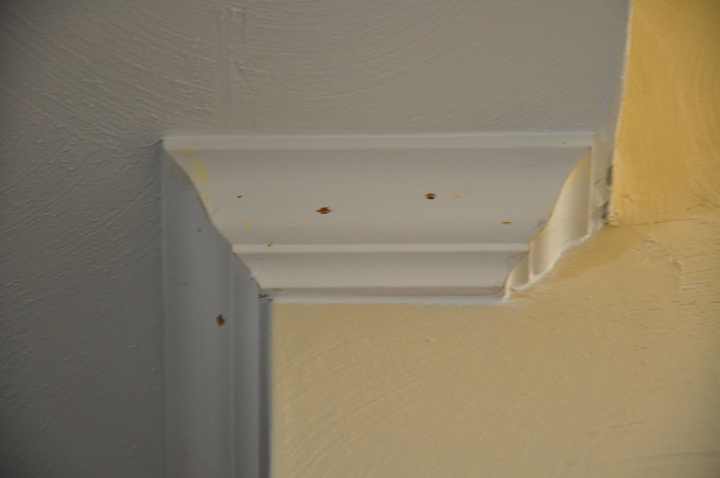 crown molding ideas | crown molding at a corner. Crown ...