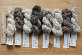 Mini Navaho-Ply Skeins | by chavala