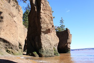 hopewell rocks | by sharron9