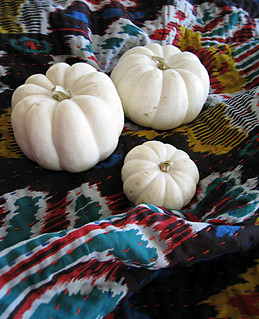 white pumpkins on ikat blanket | by ...love Maegan