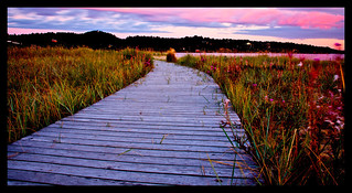 Boardwalk | by rodvelt