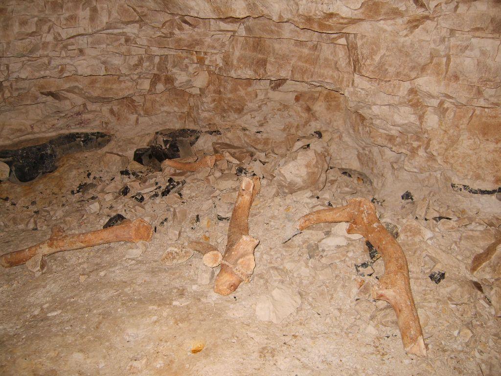 Antler tools in Neolithic Flint mine at Grimes Graves, UK ...