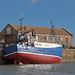 Hull at Scarborough 8867