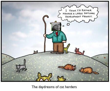 herding cats jim holmes flickr