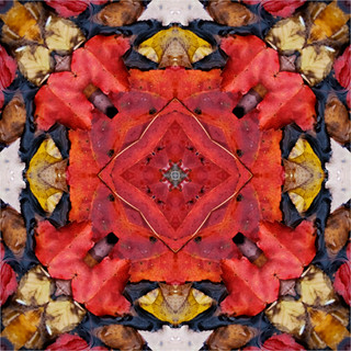 Red Leaves Geometric Tile | by Katy Silberger
