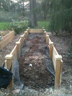 The finished raised bed | by boboroshi