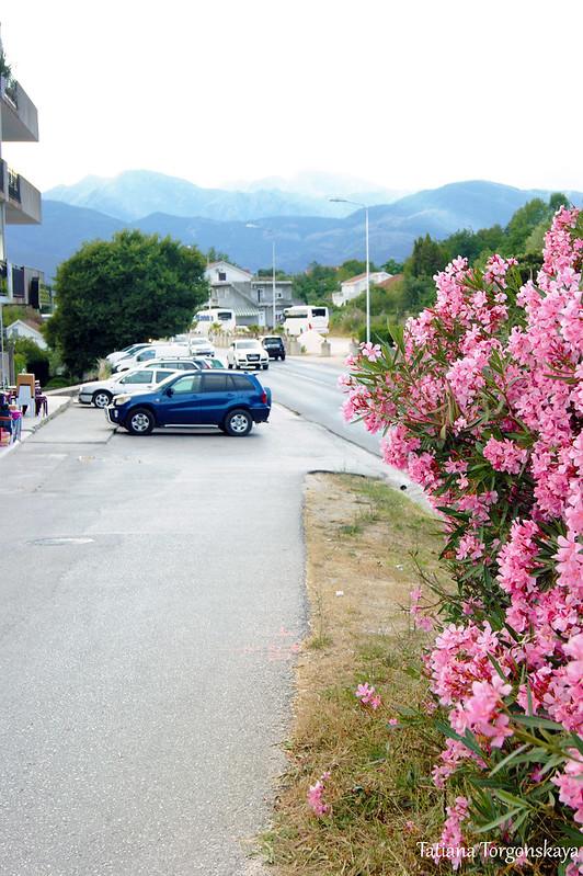 Фрагмент дороги от аэропорта Тивата до автостанции