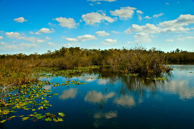 Beautiful Landscape View Everglades National Park Flickr Photo Sharing