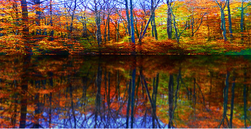Autumn Lake Scenes Autumn Lake Scene | by