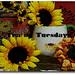 Tea on Tuesday, Sunflowers and Stuff