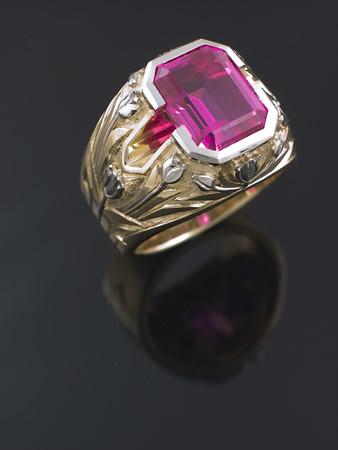 Ring Camerq
