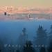 Seattle Sunrise this morning