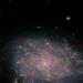 NGC7793