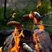 Kettukallion elämystila, campfire 5