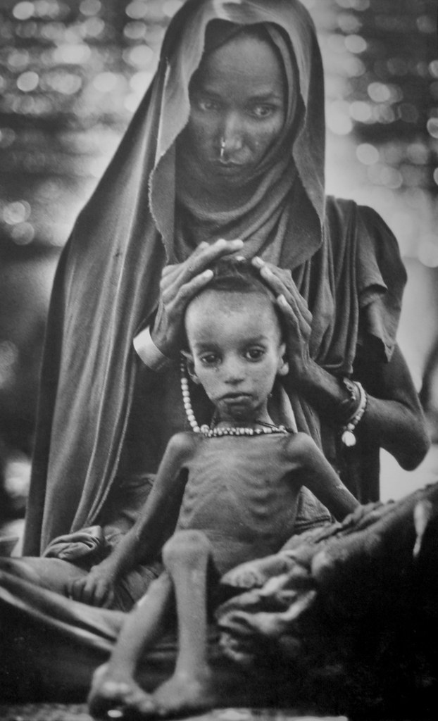 ethiopian famine 2014-10-27  there is famine in ethiopia in 2014, but it is known by other fancy names famine in ethiopia is a topic that horrifies me over the years, i have written long commentaries on the subject often challenging with incontrovertible.