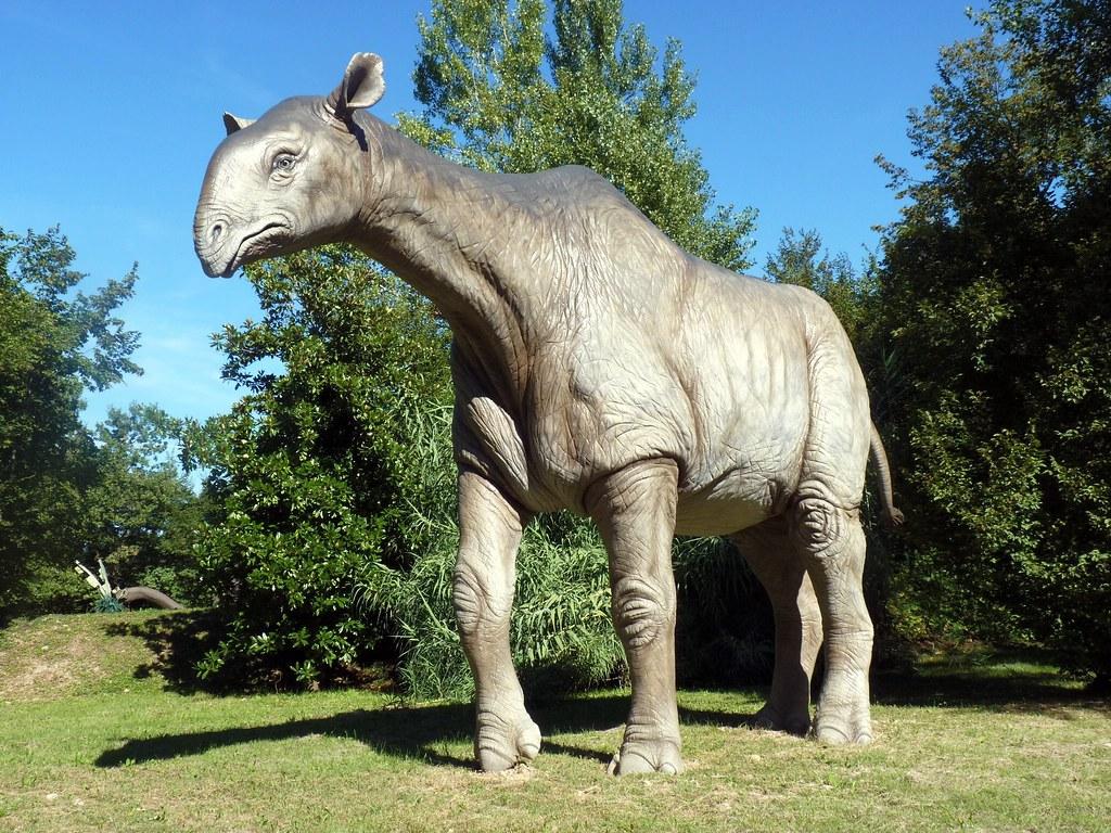 Indricotherium (Paraceratherium) | Paraceratherium, also ...