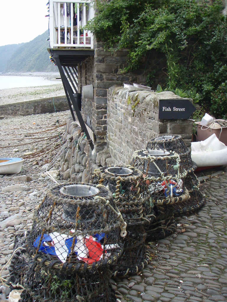 Fish Street In Clovelly Sheep R Us Flickr