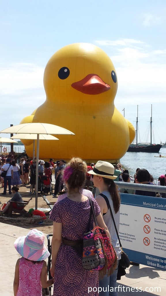 Giant Rubber Duck at H2O Park Toronto | Giant 6 story high y… | Flickr