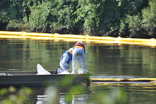 KALAMAZOO RIVER OIL SPILL in Battle Creek Michigan | by mic stolz