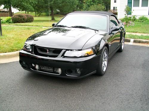 Terminator Cobra Coupe Vs Convertible