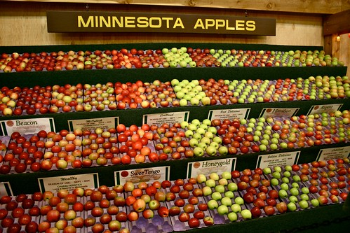 Minnesota Apples at the Minnesota State Fair | by Kim | Affairs of Living