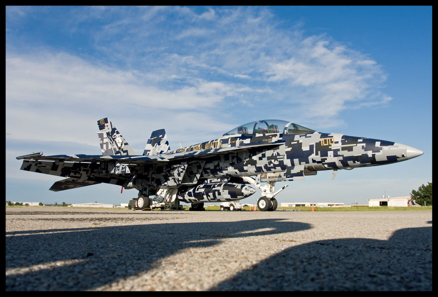 F 18f Super Hornet Vfa 122 Digital Camo 100 Years Cag Flickr