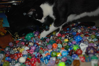 Kitty wants to play with my GenCon dice haul | by WilWheaton
