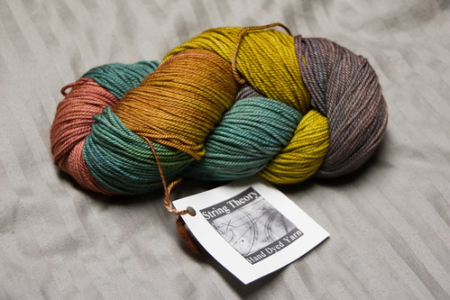String Theory Yarn | by happyskrappy