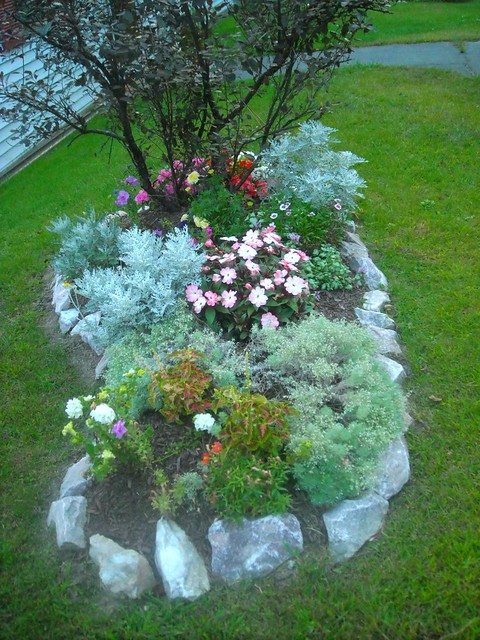 Simple but beautiful flower bed flickr photo sharing for Beautiful flower beds