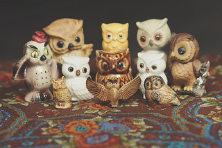 Ola's owls | by LaneyButler