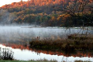 40th Anniversary Photo Contest Winner LANDSCAPE. October morning by Kimberly Copley Harris | by Pennsylvania Environmental Council
