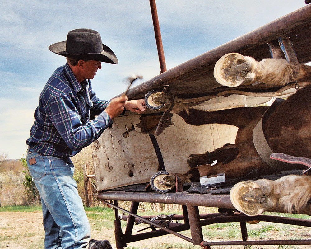 Three Forks Montana horse ranch   Horse shoeing contraption   Flickr