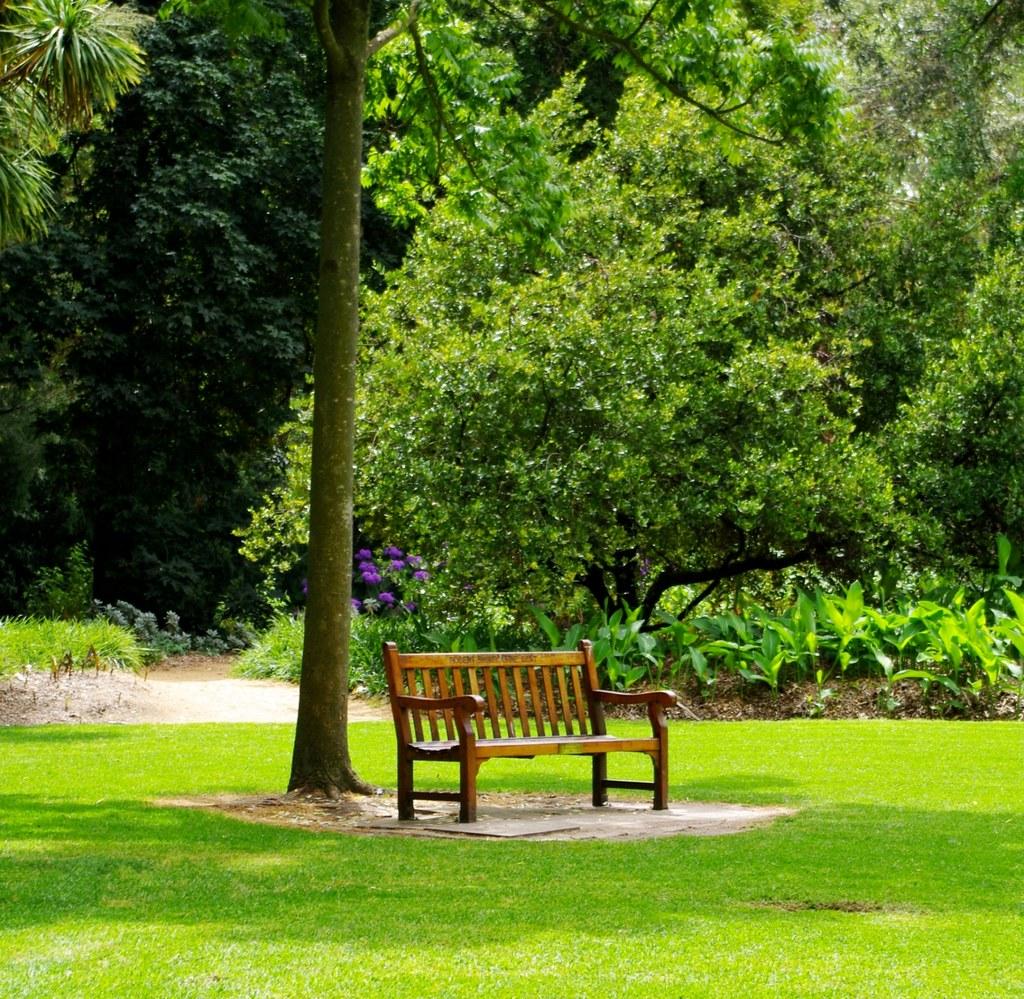 Bench adelaide botanic gardens adelaide botanic for Adelaide gardens