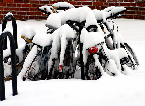 Winter Bikes | by Steffe