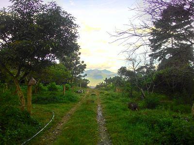 20170625_lenggong_path