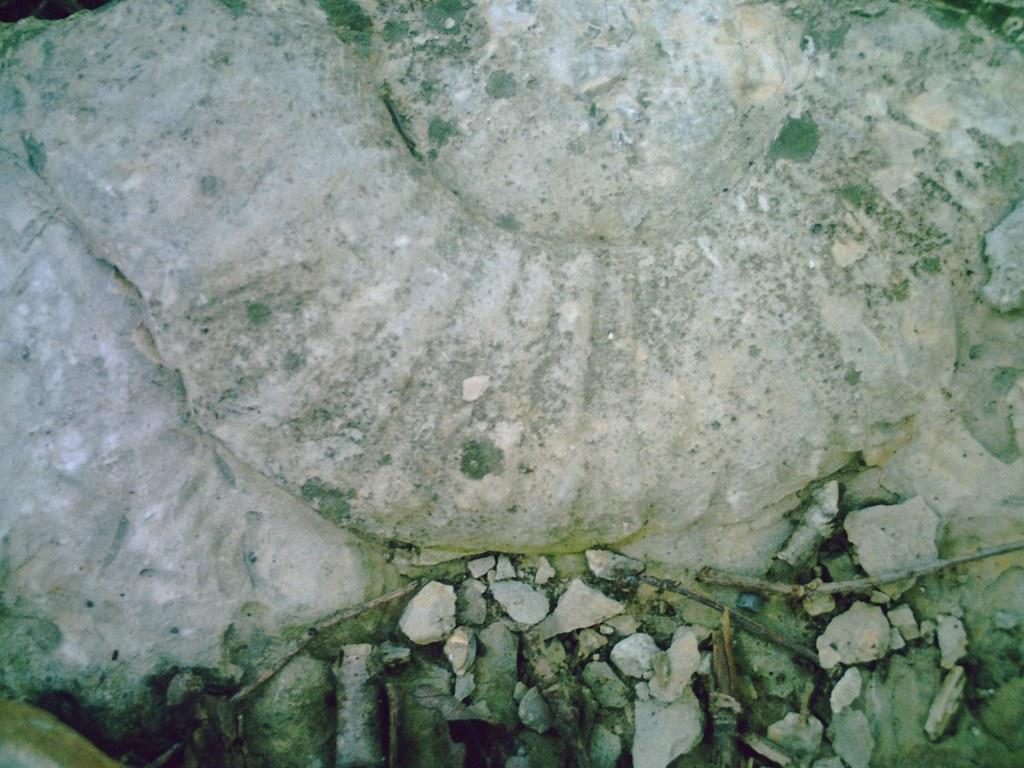 Image Result For Eisenhower State Park