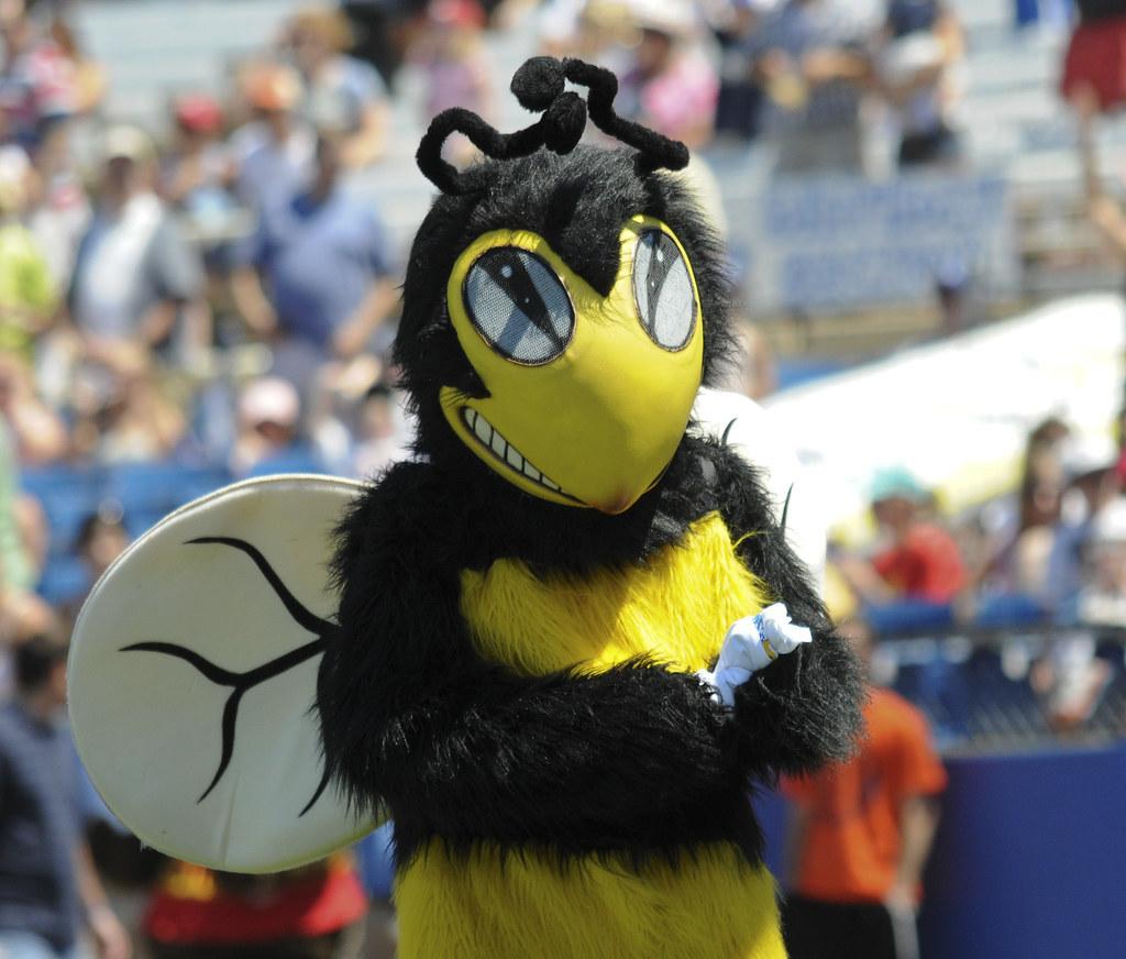Newark High School Yellow Jacket The Wilmington Bluerocks Flickr