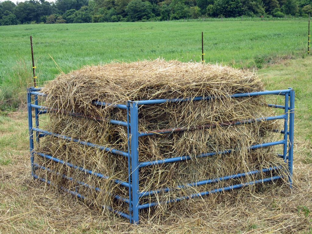 Round Bale Feeder Susan S Flickr
