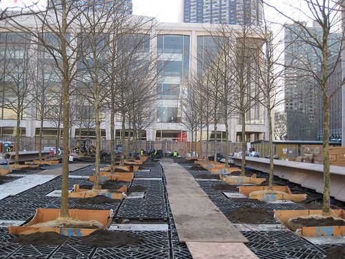Silva Cell Installation At Lincoln Center Bosque New York