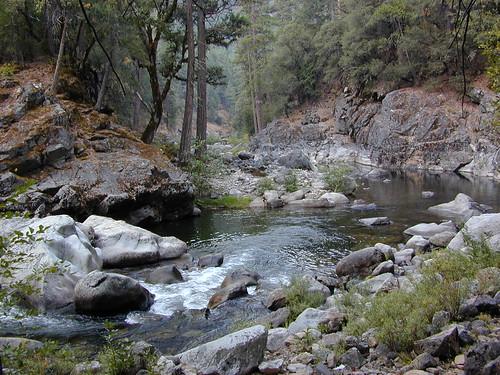 Mokelumne river remote location off hwy 88 via 20 mile for Sierra fish in english