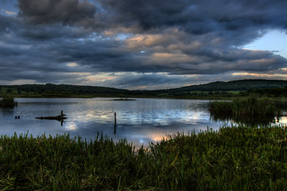 Leighton Moss RSPB Reserve Evening Light | by focusmania