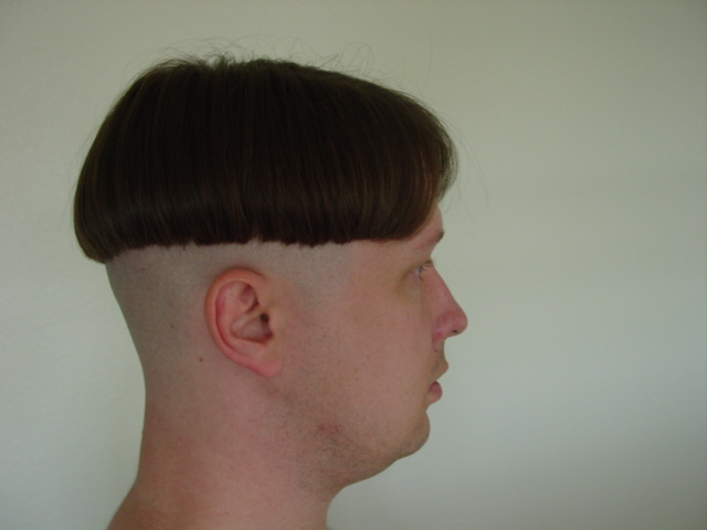 Z Cut Hairstyle: Cchandler1297