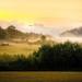 Newfound Sunrise With Alternate Crop