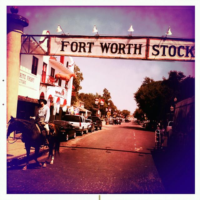 Stockyards Historic Fort Worth Texas Cattle Drive Herd