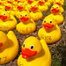 Olney Duck Race