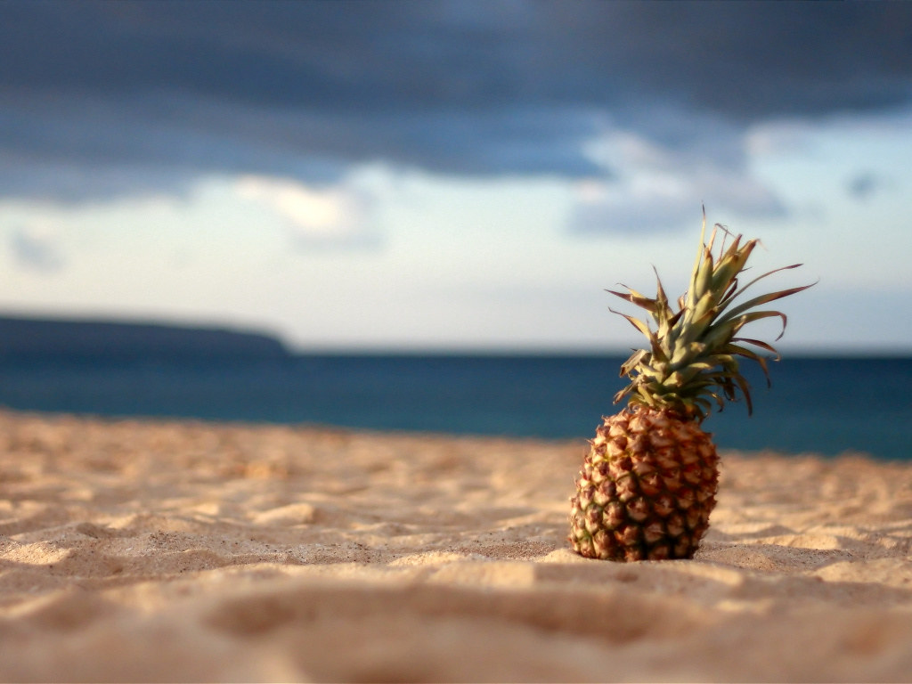 Pineapple At The Beach: Taken About 10 Minutes Before Sunset On