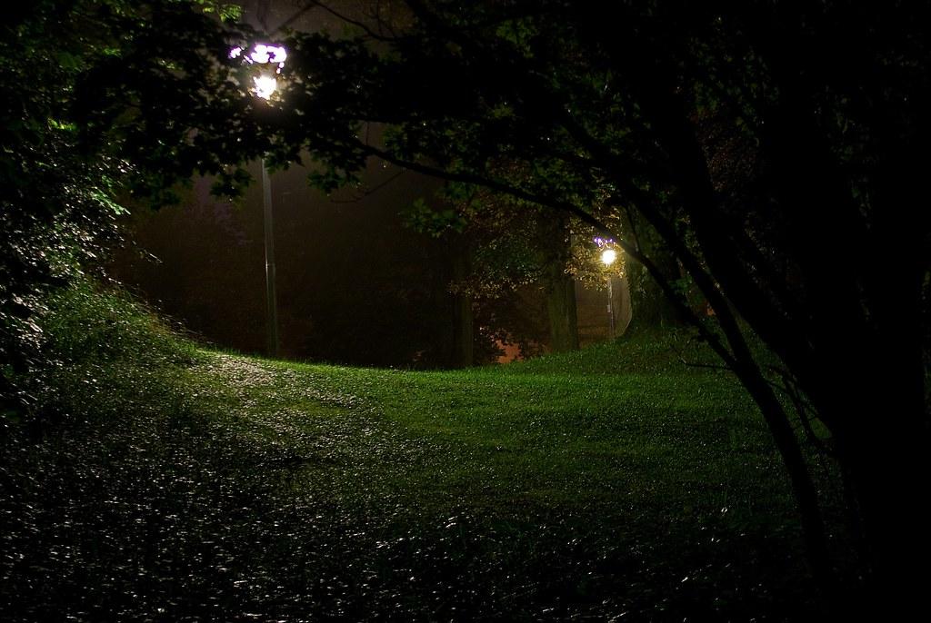The Dark Park