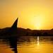 Golden Nile 1