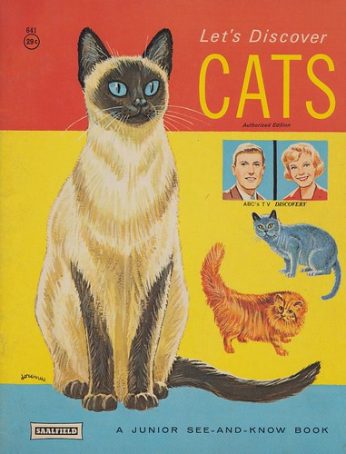 Let's Discover Cats | by The Cardboard America Archives